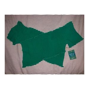 Forever 21 Green Beach Collection Cropped Top